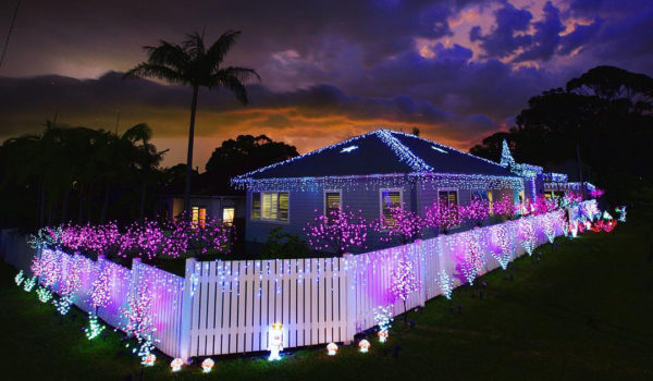 10 Best Solar Christmas Lights Reviews and Guide for 2020