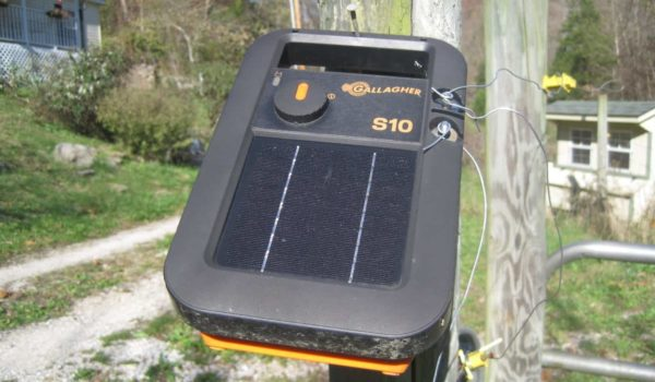 10 Best Solar Fence Chargers 2021 – Reviews and Buyer's Guide
