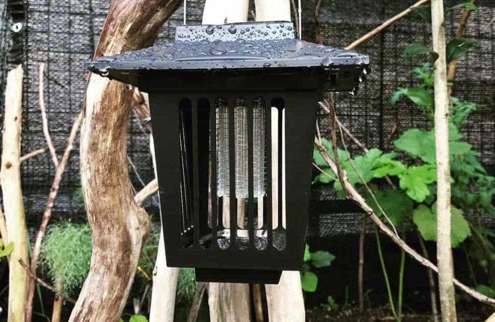 10 Best Solar Bug Zapper in 2021 – Reviews and Buyer's Guide