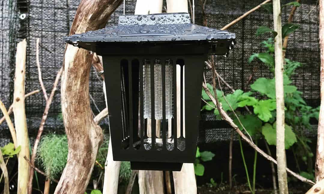 best solar powered bug zapper