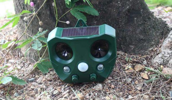 10 Best Solar Pest Repellers 2021 – Ultrasonic Pest Repeller Reviews
