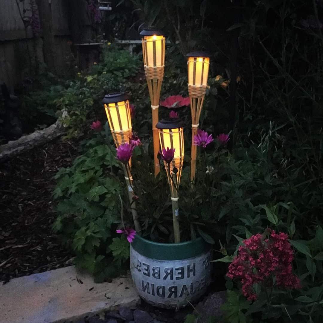 solar torches